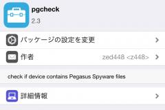 pgcheck