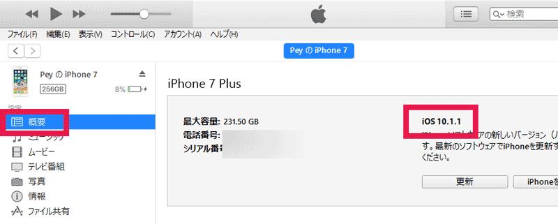概要をクリックしてiOSバージョンをチェック